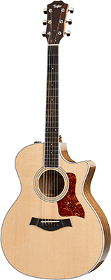 Taylor 414ce Guitar Front